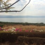 looking over the sea of Galilee from the Mt of Beatitudes